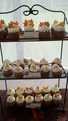 Autumn Wedding cupcake display that I made.