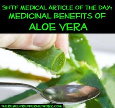 SHTF Medical Article of the Day: Medicinal Benefits of Aloe Vera