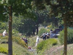 Cazuza: Suspeito de atentado da França confessa ter decapi...