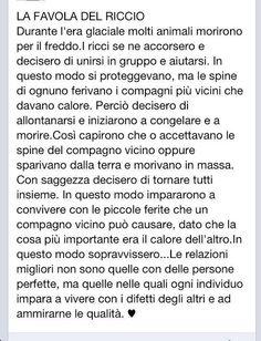 Favola del riccio Italian Quotes, Something To Remember, Learning Italian, Phobias, Relationship Advice, Inspire Me, Sentences, Life Lessons, Einstein