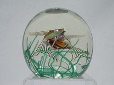 Fratelli Toso Aquarium glass paperweight