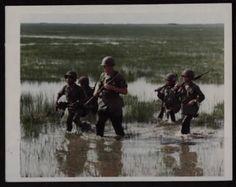 Page 41 Photos - Vietnam War Army - Fold3