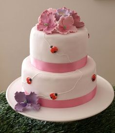 Pretty pastel Lady Bug cake