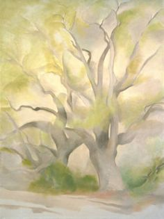 Green Tree  Artist/Creator 	O'Keeffe, Georgia  Creation Date 	1953  oil on canvas  Dim 41 1/2 x 30 3/8 in