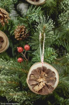 Natural materials used for Christmas decorations can make the evergreen look like we never took it out of the forest. Christmas Mason Jars, Rustic Christmas, Christmas Crafts, Christmas Decorations, Christmas Ornaments, Scandinavian Christmas, Christmas Ideas, Christmas Place Cards, Cone Christmas Trees