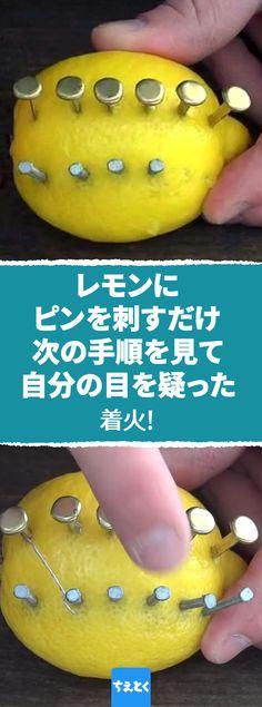 【レモンで火起こしする方法】レモンで火が付く?楽しい実験!#実験 #レモン #火起こし #キャンプ #自由研究 #電気 #道具 #楽しい レモンで火がつくことを知っていますか?この小さな柑橘フルーツがあれば、キャンプ・ファイヤーだってお手の物!周りの人から感心されること間違いなしの「レモン電池の作り方」を紹介します。 Lemon Nails, Peace And Love, Life Hacks, Camping, Fruit, Creative, Outdoor, Trivia, Technology