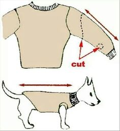 Diy pet sweater...upcycle old sweaters and hoodies