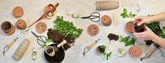 Hvad er urban gardening?