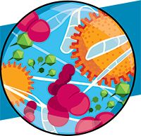 link to puzzling pathogens
