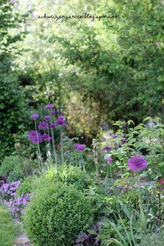 Ein Schweizer Garten: Die Macht der Farben