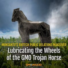 Monsanto has embarked on an international campaign by upgrading its association with Fleishman Hillard, one of the biggest public relations firms in the US. More here: http://www.globalresearch.ca/monsantos-biotech-public-relations-makeover-lubricating-the-wheels-of-the-gmo-trojan-horse/5395588 #stopmonsanto #GMOs #biotech #labelGMOs #righttoknow #divestmonsanto