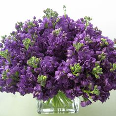 Purple Stock Wedding Centerpiece:   For an October wedding or event, consider available and budget-friendly Stock for your arrangements. The purple is lovely.