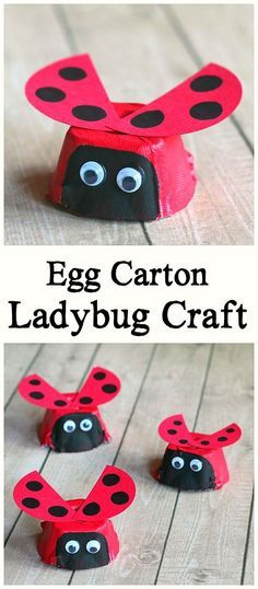 Egg Carton Ladybug Craft for Kids: Easy ladybug art project for preschool and kindergarten. Makes a great addition to a unit on insects or bugs or an extension activity to The Grouchy Ladybug by Eric Carle! Fun activity for spring, summer, or Earth Day! ~
