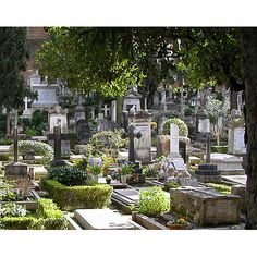 The non-Catholic Cemetery in Rome