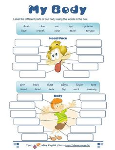 Body parts worksheet english for kids english exercises english classroom แ Kids English, English Words, English Lessons, English Grammar, Teaching English, Learn English, Ingles Kids, English Exercises, English Activities
