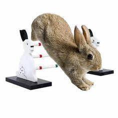 Shadow Hop 3-bar Rabbit Agility Jump http://rabbithutchzone.com/shadow-hop-3-bar-rabbit-agility-jump/  #rabbit accessory #agility jump