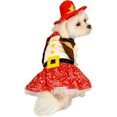 Anit Accessories Cowgirl Dog Costume