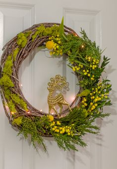Molly Mell: Planty wishes for 2016 - A living wreath