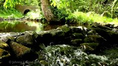 8 hours of Water Sounds for Relaxation and Meditation-Relaxing Waterfall...