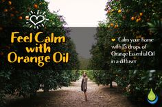 The fresh, uplifting scent of Orange is universally treasured. Soothe a ruffled… 100 Pure Essential Oils, Pure Oils, Orange Essential Oil, Wellness Spa, Orange Oil, Medicinal Plants, Herbal Remedies, The Fresh, Doterra