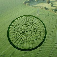 Crop circles | RNN has received word that dozens of identical crop circles have ...