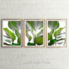 Set Of 3 Leaf Prints, Banana Leaf Print, Wall Art, Tropical Prints, Prints, Botanical Print, Wall Decor, Print, Palm Leaf, Green Wall Decor