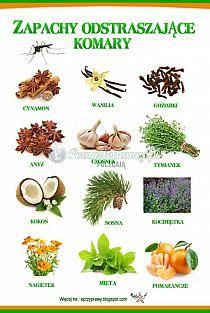 porady na Stylowi.pl Raw Food Recipes, Healthy Recipes, Healthy Food, Beauty Tips For Teens, Edible Arrangements, Useful Life Hacks, Health Advice, Wellness Tips, Good Advice