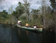View showing a Seminole woman with her children in a dugout canoe on a Florida canal along the Tamiami Trail. ~ very good photograph Haunted Trail Ideas, Miami Images, Dugout Canoe, Airboat Rides, Seminole Indians, Seminole Florida, Fort Myers, First Nations, Pacific Northwest