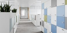 Office Plants, Environmental Graphics, Commercial Interiors, Corridor, Open Plan, Lockers, Office Spaces, How To Plan, Workplace