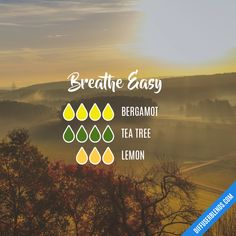 Breathe Easy — Essential Oil Diffuser Blend