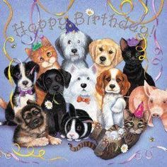Happy Birthday Animals, Happy Birthday Greetings Friends, Happy Birthday Dog, Happy Birthday Video, Birthday Blessings, Happy Birthday Pictures, Birthday Songs, Happy Birthday Messages, Cat Birthday