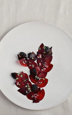 """Name: A Salad of Blackberries and Beetroot — Tips On Staying Creative From Noma Star Chef Rene Redzepi"""" by Carry Dunne, Fast.Co Design (Retrieved: 26 June, Chefs, Nordic Kitchen, Molecular Gastronomy, Edible Art, Culinary Arts, Restaurant Recipes, Plated Desserts, Creative Food, Food Presentation"""
