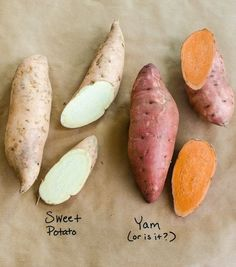 What's the Difference Between Yams and Sweet Potatoes? — Word of Mouth