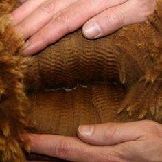 Alpaca Wol - Alpacawereld.nlAlpacawol is tien keer warmer dan schapenwol, heeft de kwaliteit, uitstraling en zachtheid van kasjmier en zijde en is anti-allergeen. Deze factoren maken het mogelijk om kleding van alpacawol zeer comfortabel op de blote huid te dragen.