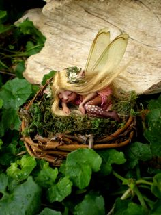 Tiny Woodland Forest Fairy in Birds Nest by Celia Anne Harris