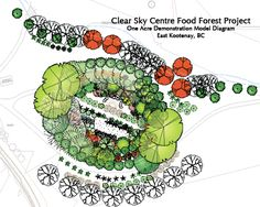 Food Forestry Design. A food forest for newbies to Permaculture is a landscape like your front yard planted with food crops. Fruit trees, nuts, berries, beautiful grown covers ( some of which are herbs and can be eaten), root vegetables, salad greens, vegetables....