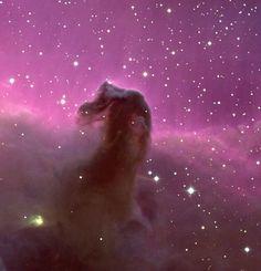 La nebulosa Cabeza de Caballo o Barnard 33 (B33), es una nube de gas fría y oscura, que resalta contra una brillosa nube de gas denominada IC 434. Está situada a unos 1000 años-luz de la Tierra, al sur del extremo izquierdo del Cinturón de Orión.