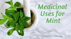 Click through to learn about all the health benefits associated with mint!  Lots of recipes for your herbal spa, too!