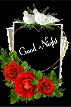good night images with rose flowers Good Night Friends Images, Good Night Thoughts, Good Night Love Quotes, Good Night Prayer, Good Night I Love You, Good Night Blessings, Good Night Gif, Good Night Messages, Good Night Sweet Dreams