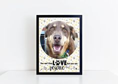 Custom Pet Wall Print You can't buy love but by MagicCatDesign