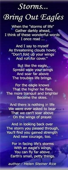 overcoming challenges - Have we use our Eagle's wings to Soar above the storm of troubles or fold it and run for cover? Inspirational Poems, Motivational Quotes, Goal Quotes, Lesson Quotes, Encouraging Poems, Helen Steiner Rice Poems, Spiritual Quotes, Positive Quotes, Gym Frases