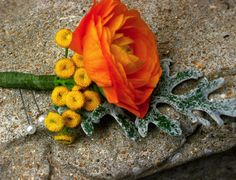 Orange Ranunculus and tansy boutonniere