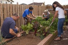 Entering the Blue Zones: Live long and prosper - North Hawaii News