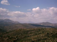 Overlooking the valley at Mycenae