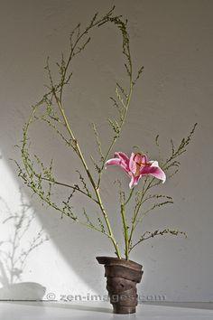 Ikebana-043.jpg by Zen-Images, via Flickr