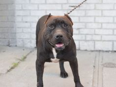 JACOB A1089760 ~ UPDATE (Sep, 22 2016): TO BE KILLED TODAY!!!