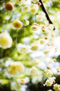 Hanging gardens....