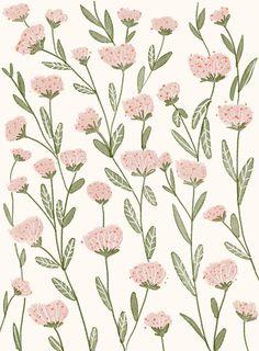 Pastel Pink Blooms Pattern