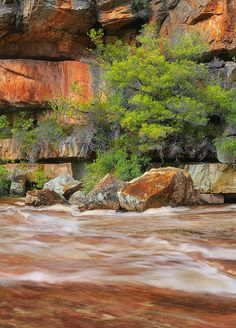 A tributary on a farm called Beaverlac.Moderatly difficult to photograph in good light. Best time to visit is winter. West Coast, South Africa, Photograph, African, Holidays, Mountains, Landscape, Winter, Places