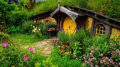 Image result for nz landscapes hobbiton
